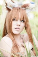Horo Spice and Wolf 06 by thirdstop