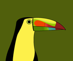 Keel Billed Toucan by flippytiger