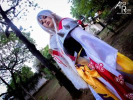 Sesshomaru by chrona18