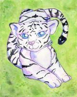 White Tiger by Starrydance