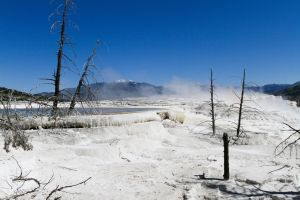 Mammoth Hot Springs 2 by 4everN3rdy