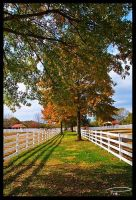 Pasture fences by Photo-Cap