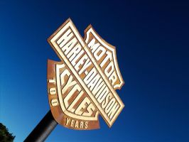Harley Davidson pin by pacorosso