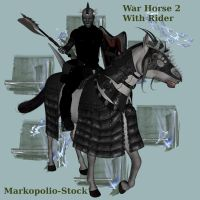 War Horse 2 and Rider-Dec 2 07 by markopolio-stock