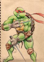 Raphael Drawing by rkw0021