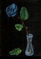 blue rose by anjasp3