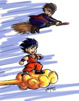 Harry Potter Races Chibi Goku by lauraneato