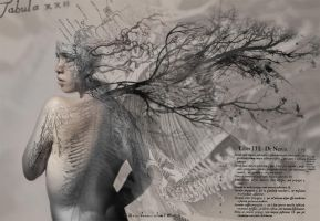 Upon Variations by LuisSanchez