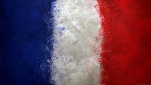 France -Mgn Flag Collection 2013 by GaryckArntzen
