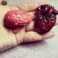 Anatomical heart and brain by CuteAndCreepy86