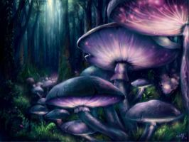 magic mushrooms by leukoula