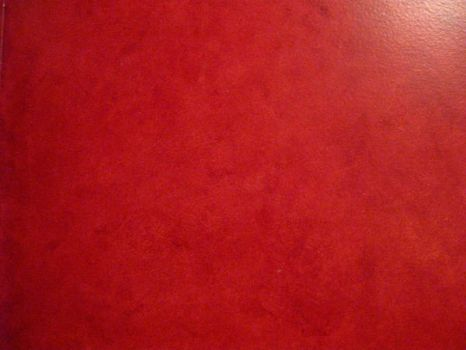 Red Wall 2 by CatLo