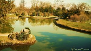 Parc of Versailles by IpomeaTricolor