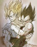 Goku and Vegeta by nuooon