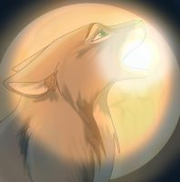 Wolf Moon by dyb