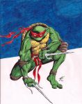 Raphael by coyote117
