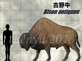 Bison antiquus by sinammonite