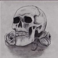 Skull and roses by pomelichat