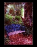 The Enchanted Bench by Forestina-Fotos