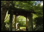 Chinese Gardens 5: Entry by blacklollypops