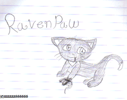 Ravenpaw caught a mouse by 222222555555