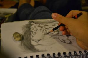 Tiger WIP by muppenxD