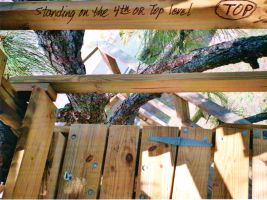 Our Treehouse Built by My Husband {Photo 49} by Empress-XZarrethTKon