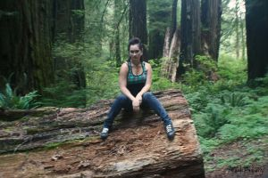 Redwoods-NBDP 03 by SnickerdoodleAngel