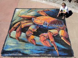 Sally Lightfoot Crab Chalk Art by charfade