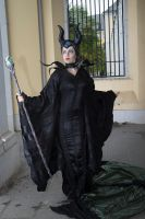 Maleficent15 by Valerie-Mrosek-Stock