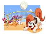 Who's up for some Volleyball? by ScittyKitty