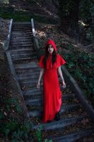 down the path by fae-photography