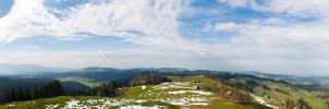 View form Schallenberg by Miingno