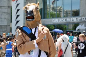 Fanime 2014 : Attack on Horse! by JuniorAfro
