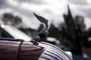 Mascot, 1937 Triumph Dolomite by FurLined