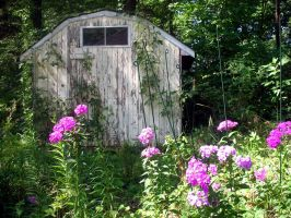 Kline's Shed 2 by edgyqueen
