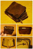 The Time-Traveller's Journal by svenmarie