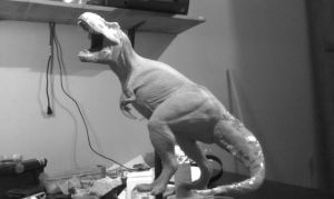 T REX 1/15 scale by GalileoN
