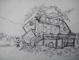 Panda's new house by MelodicInterval