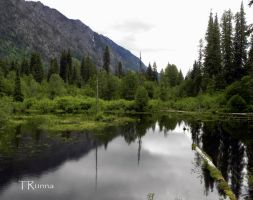 Still Waters with Green by TRunna