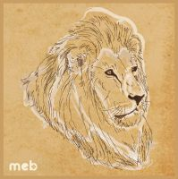 Lion's head by meb85