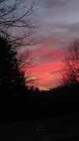 Reflection by TheMarchStudios
