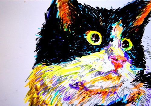 highlighter and marker drawing of a cat by calvincrimson