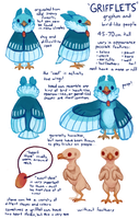 Grifflets ref by fancypigeon