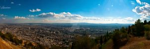 Damascus Top View VII by ashamandour
