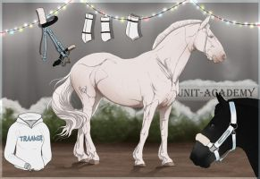Traaker Import |Christmas GIFT 110 by BRls-love-is-MY-Live