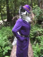 Pimp-Wolfdog in the Woods... by wolfforce58