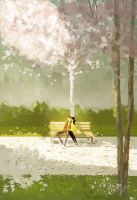 After rain by PascalCampion