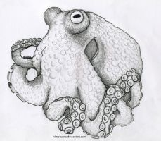 Octopus by Nimphaiwe