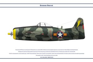 Bearcat South Vietnam 3 by WS-Clave